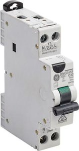 GE Aardlek Automaat 2-polig 10A